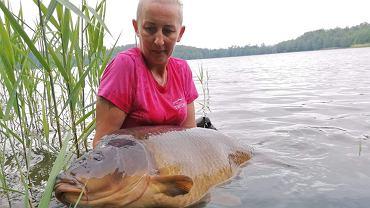 Karp z Jeziora Miłoszewskiego ważył 31,85 kg