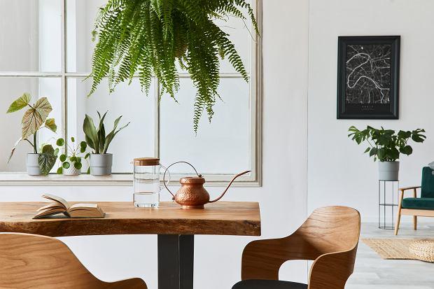 Codzienna dekoracja stołu w salonie- elegancko, stylowo i nowocześnie