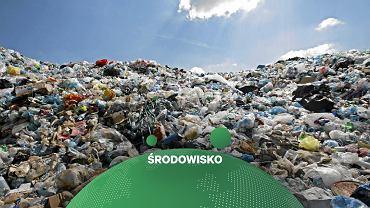 Wysypisko śmieci / zdjęcie ilustracyjne