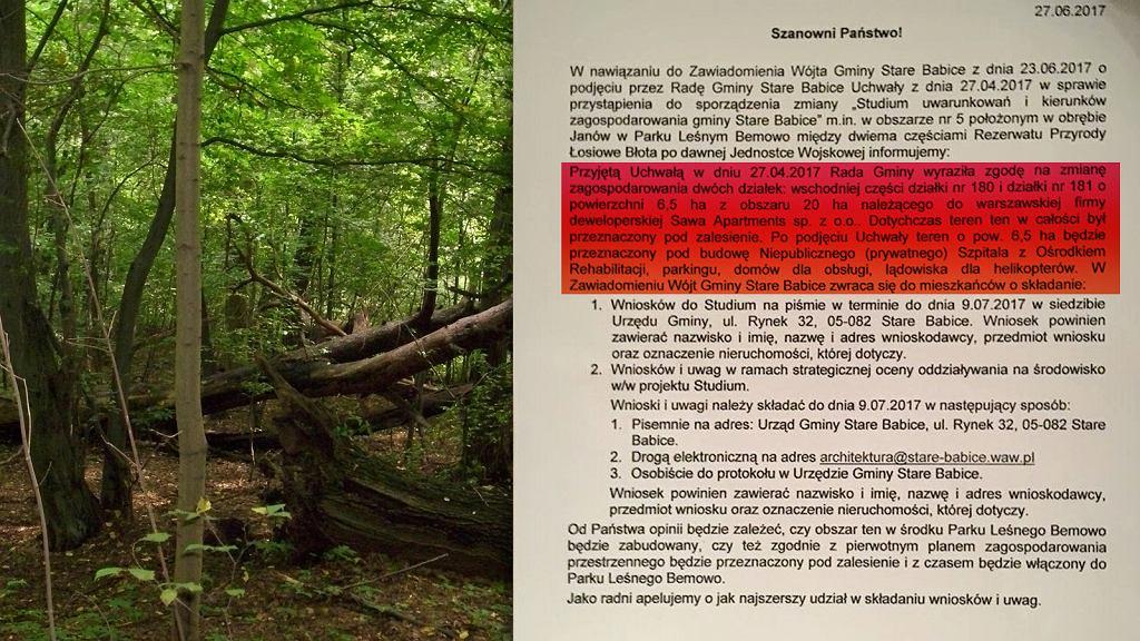 Czy to koniec Lasu Bemowskiego?