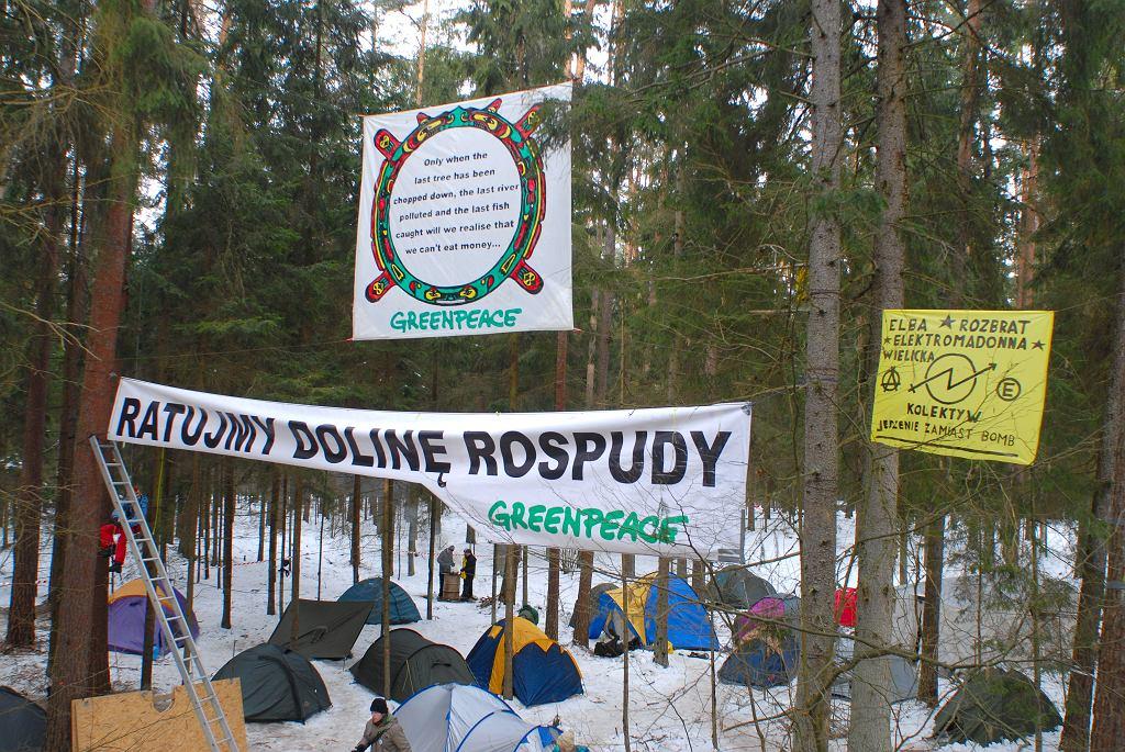 Namioty aktywistów w Dolinie Rospudy