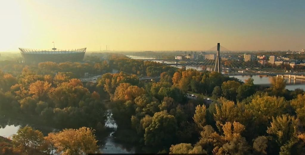 Warszawskie drzewa 'zarabiają' 170 mln zł rocznie. 1300 drzew oczyszcza powietrze z 440 kg substancji