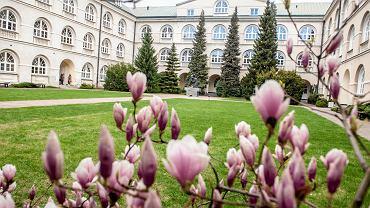 Obrona doktoratu online. Jak uczelnie radzą sobie z egzaminowaniem studentów na odległość?
