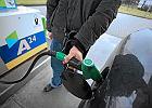 Statystyczny Polak za jedną wypłatę kupi 688 litrów benzyny. A jak jest za granicą?