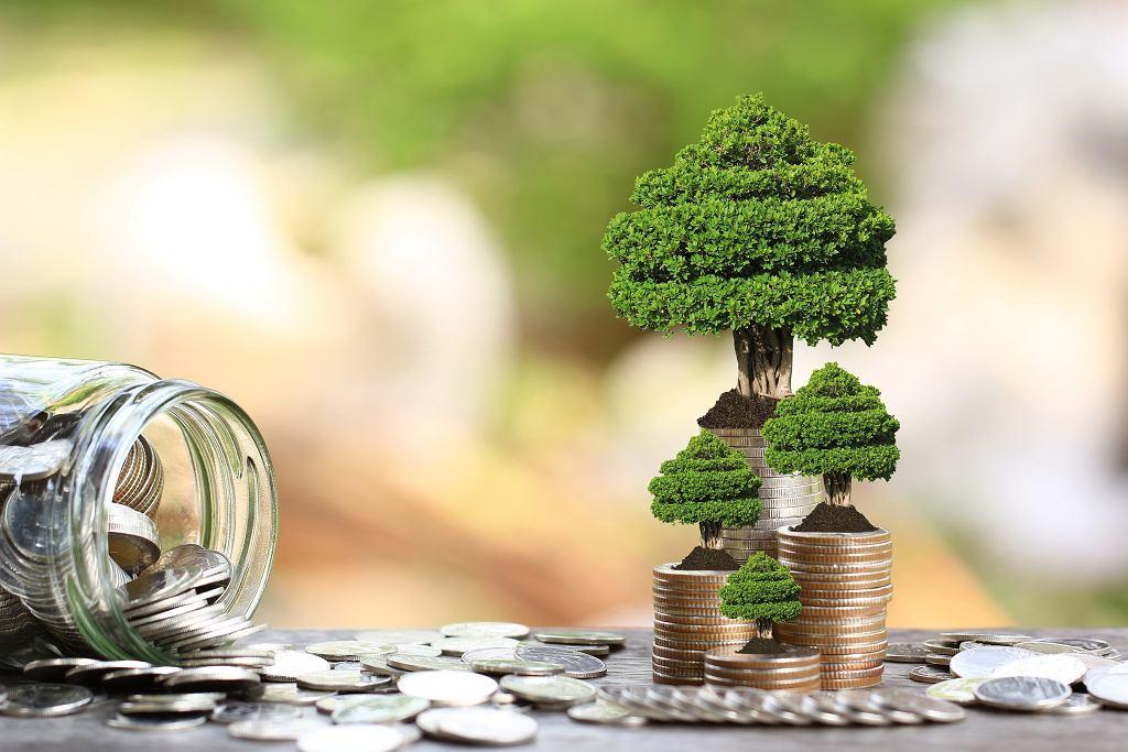 Polska drugi raz wyemitowała obligacje typu Green Bonds