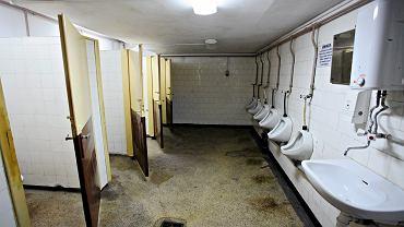 Kraków: Dyskryminacja kobiet w toaletach miejskich? Złotówka za kabinę, 50 gr za pisuar/ zdj. ilustracyjne