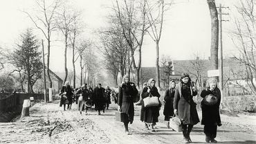 Ekspatriacja Niemców z byłych niemieckich regionów wschodnich, 1946 r.