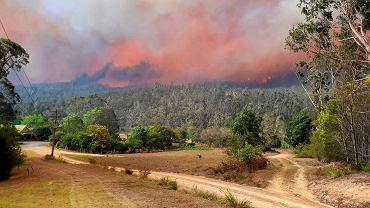 Pożary w Australii, zdjęcie z 30 grudnia 2019 r. w pobliżu Nerrigundah