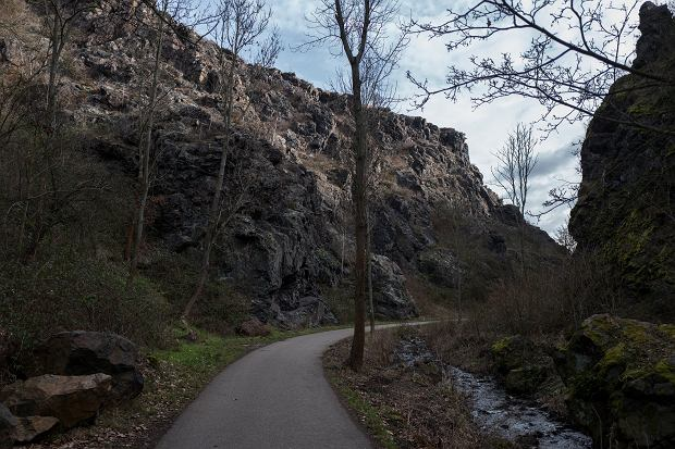 Divoká Šárka, jeden z największych parków Pragi (fot. Filip Springer)