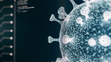 Naukowcy znaleźli wczesne sekwencje koronawirusów, które w tajemniczy sposób usunięto z bazy danych. Co to oznacza