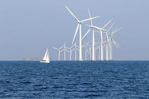 Polskie wiatraki złapią wiatr na Bałtyku? Do połowy 2019 roku rząd obiecuje system wsparcia dla inwestorów