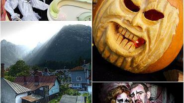 Dokąd na Halloween w Europie?/ Fot. Kolaż Gazeta.pl