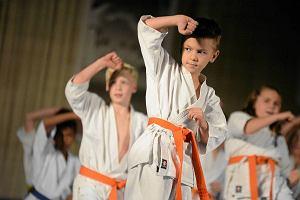 Mistrzostwa Europy w karate kyokushin odbędą się w Katowicach. Kto powali byka?