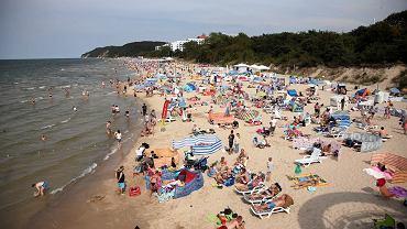 Bon turystyczny (zdjęcie ilustracyjne)