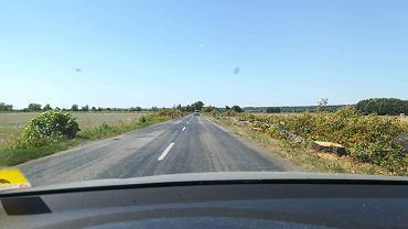 Trasa obok Trzebiechowa po wycince drzew