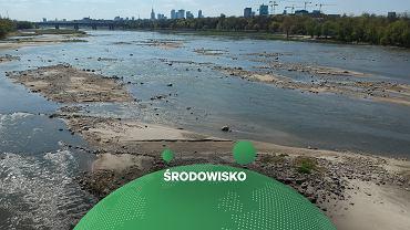 Niski poziom wody w Wiśle w Warszawie.