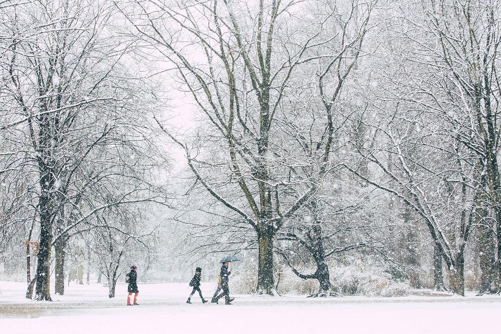 Ostrzeżenia pogodowe I stopnia. IMGW ostrzega przed śniegiem i oblodzeniami