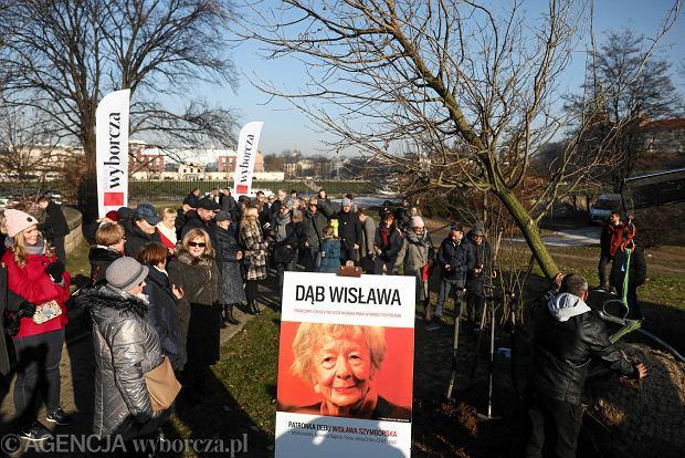 Dąb Anna Aktualne Wydarzenia Z Kraju I Zagranicy Wyborczapl
