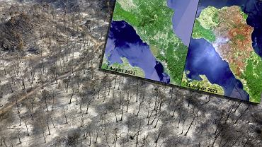 Spalone połacie ziemi na wyspie Eubea