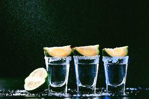 Drinki z tequilą - proste przepisy. Jak pić tequilę?