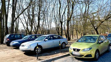 Kara za parkowanie na trawniku może wynieść 1000 zł