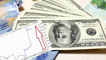 Złoty umacnia swoją pozycję względem Dolara