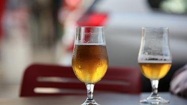 Piwo SAN Test Pilot jest określane jako 'lekki trunek z nutami dojrzałych owoców'
