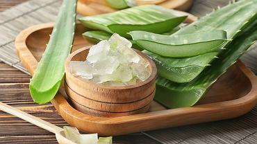 Aloes ma bardzo wiele cennych właściwości dla zdrowia - wśród nich jest działanie antyoksydacyjne i przeciwbakteryjne.