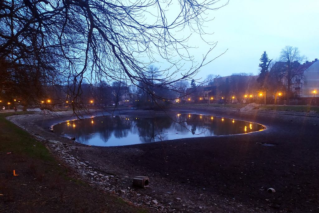 W centrum Gorzowa trwa modernizacja parku Wiosny Ludów wraz z ogrodem różanym
