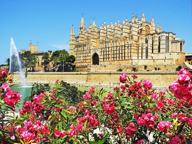 Gotycka katedra La Seu w Palma de Mallorca