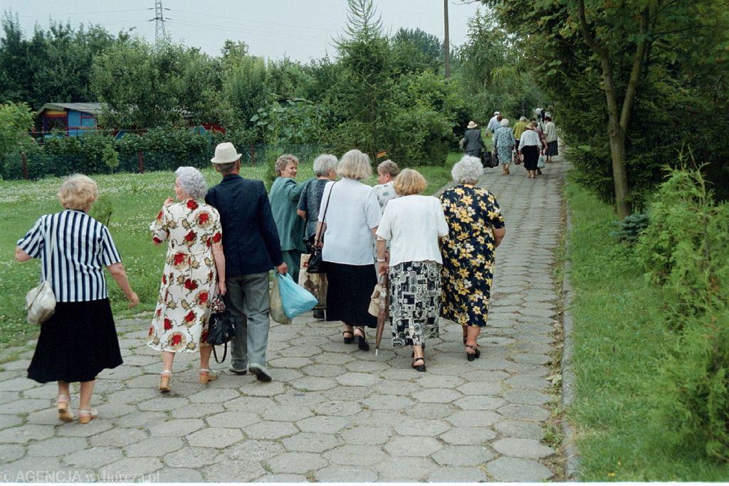 Bon turystyczny dla seniora