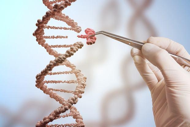 Gen - co warto o nim wiedzieć? Mutacje genów, choroby genetyczne