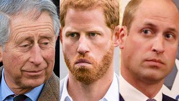 Książę Karol, książę Harry, książę William
