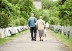 Polacy jak niemieccy emeryci? Czy giełda jest dla przeciętnego Kowalskiego