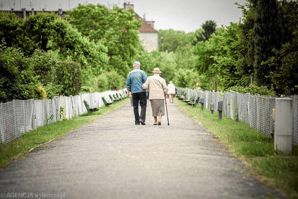 W Gdyni seniorzy są ofiarami wyłudzeń nawet kilka razy w miesiącu.