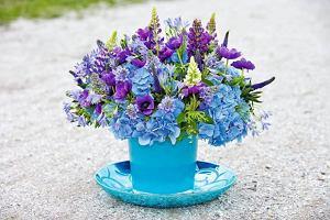 Najmodniejsze kwiaty do ogrodu