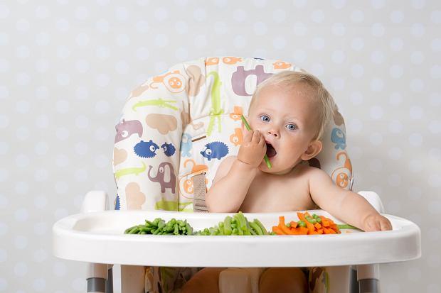 Rozszerzanie diety metodą BLW. Układamy jadłospis [PRZYKŁADOWE MENU]