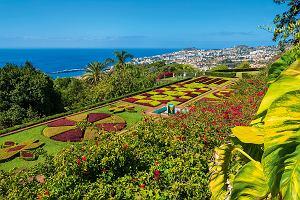 Najpiękniejsze ogrody botaniczne Europy - raj dla miłośników zieleni i imponujących kwiatów