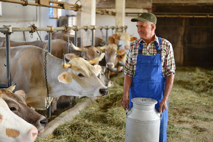 Od stycznia 2018 nie obowiązują już wcześniejsze emerytury z KRUS dla rolników