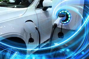 Samochody elektryczne coraz częściej pojawiają się we flotach firmowych. Już nie jako ciekawostka, ale woły robocze