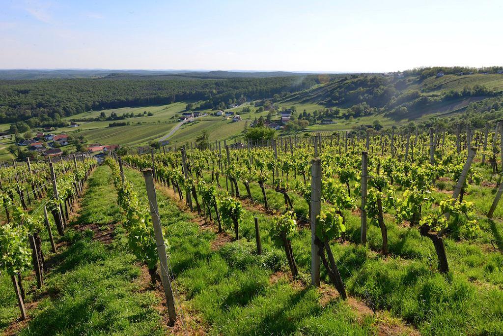 Widok z Eisenberg w Południowym Burgenlandzie