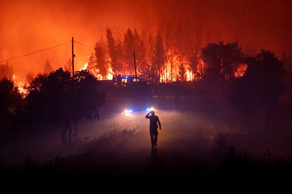 21.07.2019, pożar lasu w okolicy wsi Cardigos w środkowej Portugalii.
