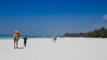 Kenia. Plaże Mombasy - Diani Beach