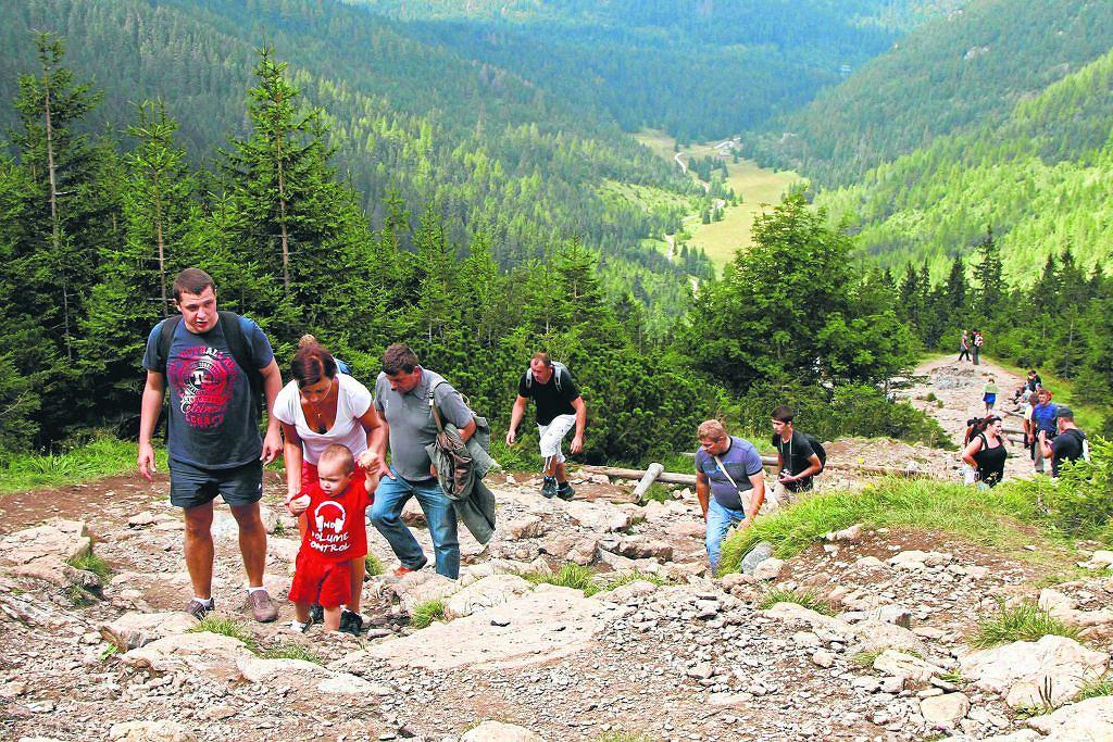 Szlak z Doliny Jaworzynki przez Przełęcz Między Kopami do Schroniska na Hali Gąsienicowej