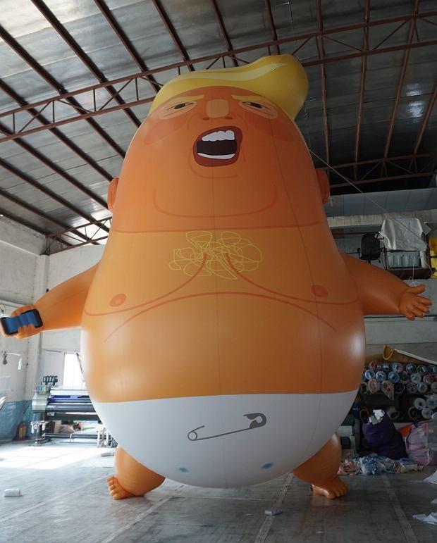 Donald Trump - karykatura