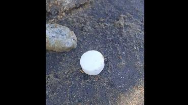 Tajemnicze białe kapsułki są znajdowane w różnych dzielnicach Warszawy