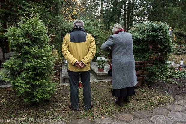 Zdjęcie numer 31 w galerii - Wszystkich Świętych we Wrocławiu. Cmentarze w kwiatach [ZDJĘCIA]