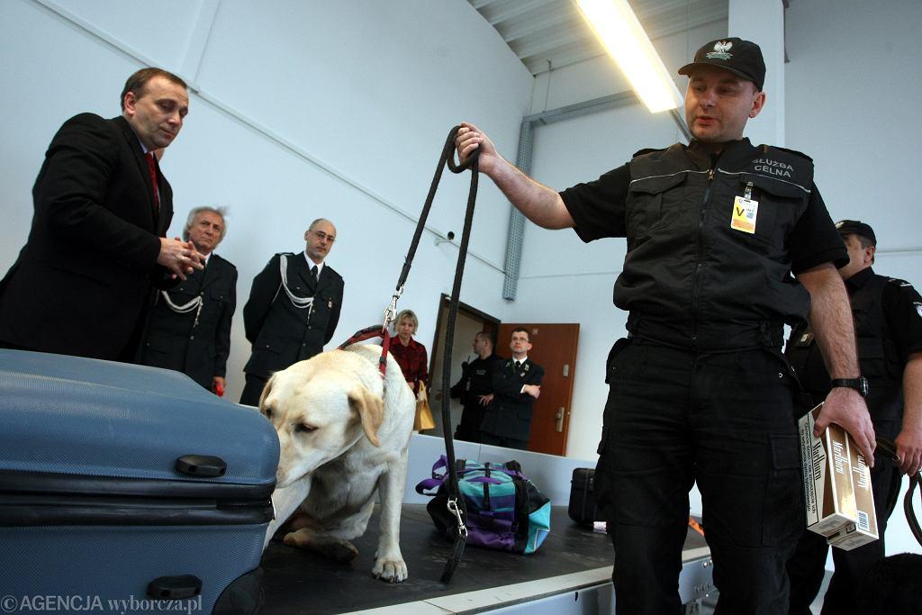 Służba Celna na lotnisku