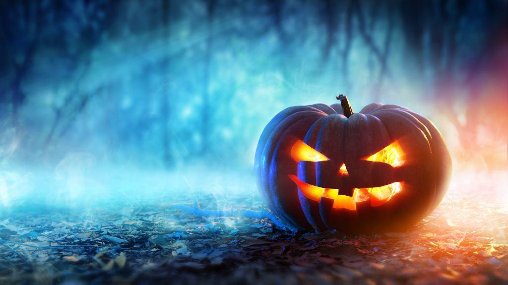 Halloween 2020 już wkrótce! Święto to najhuczniej obchodzone jest w USA. Zdjęcie ilustracyjne