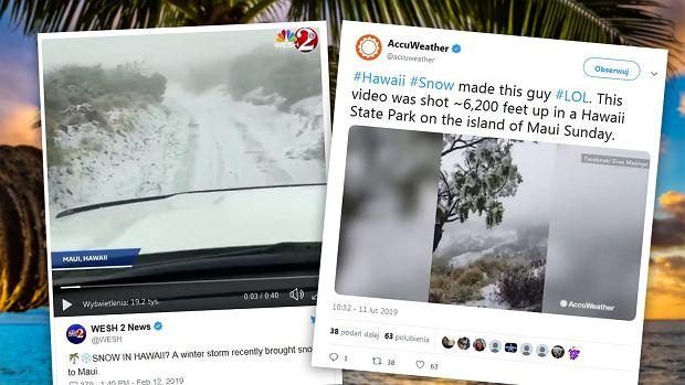 Na Hawajach spadł śnieg. W niektórych miejscach pierwszy raz w historii [ZDJĘCIA]